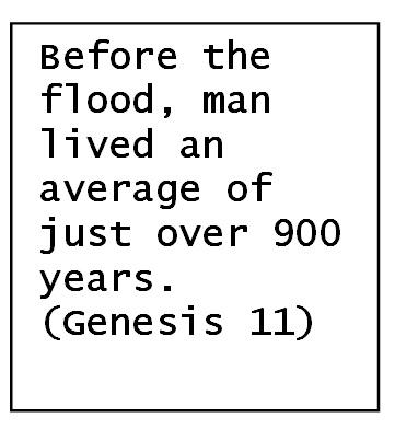 Genesis and Genetics | We look at Genetics in Genesis